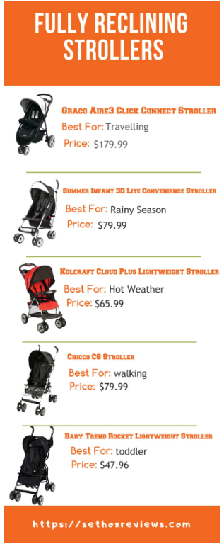 Fully Reclining umbrella Strollers infographics